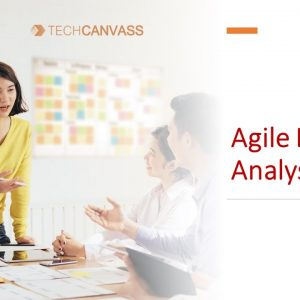 Agile Business Analyst | Everything you want to know | Techcanvass