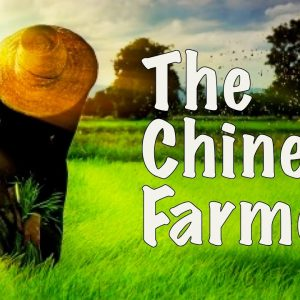Alan Watts: The Chinese Farmer