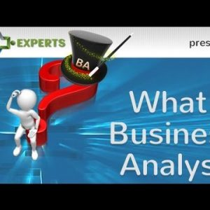 An Overview of Business Analysis for Information Technology
