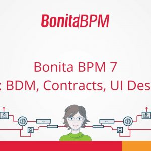 Bonita BPM 7 - Intro: BDM, Contract, UI Designer - deprecated