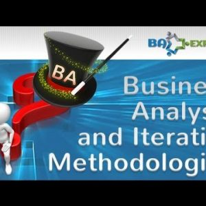 Business Analysis and Iterative Methodologies