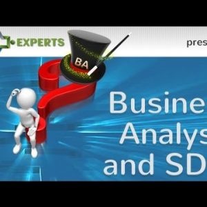 Business Analysis and System Development Methodologies (SDM)