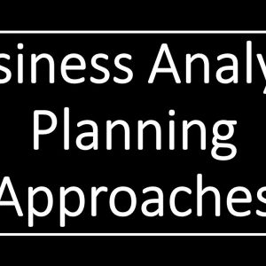 Business Analyst  BABoK V3 Plan approach | Adaptive US