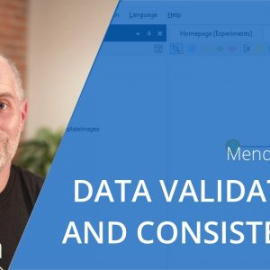 Data Validation and Consistency in the Mendix Low-code Platform