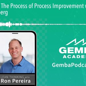 GA 336 | The Process of Process Improvement with Karen Friedenberg