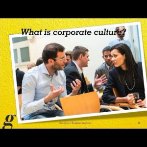 Business Analysts Driving Corporate Culture: The 9 Levels of Value Systems