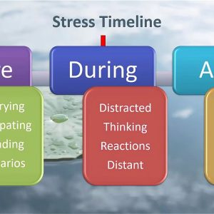 Webinar Recording: The Mindful BA – Building Resilience Through Mindfulness with Kathy Berkidge