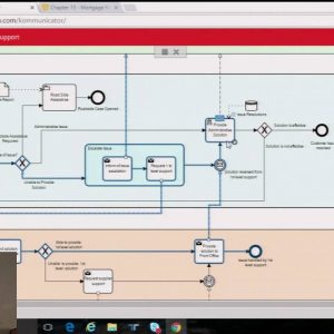 bpmNEXT 2016: Dynamic Validation of Integrated BPMN, CMMN and DMN, Denis Gagne, Trisotech