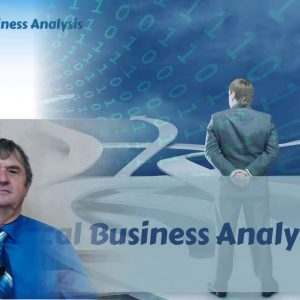 Part 3: Business Analysis Techniques Used by the Tactical Business Analyst