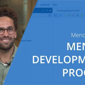 The Mendix Development Process