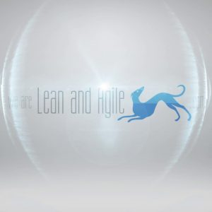 We are Lean and Agile