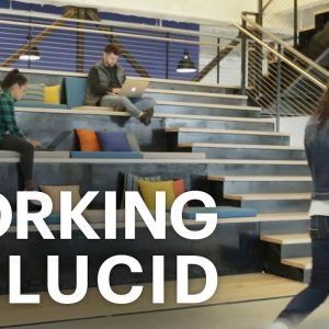 Working at Lucid (and why our employees love it)