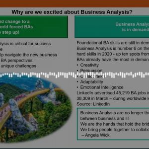 A Business Analysis Capability Story by Nedbank