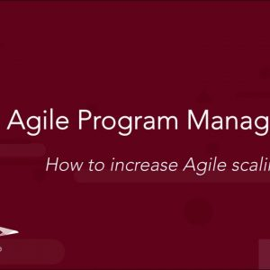 Agile Program Management