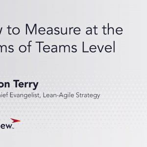 How to Measure at the Teams of Teams Level