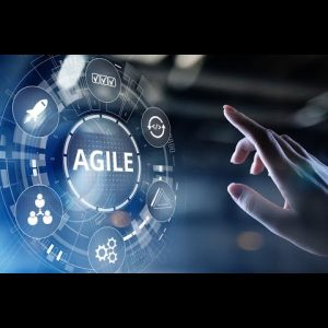Agile project management - virtual panel for university students and academics