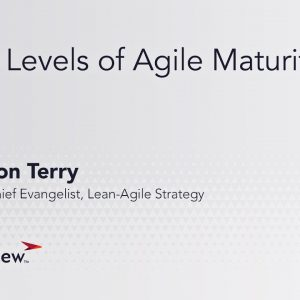 Two Levels of Agile Maturity
