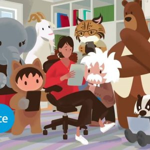 Dreamforce To You 2020 | Salesforce