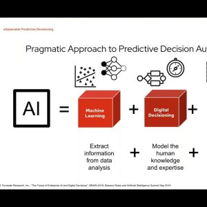 Why Is This Customer 'High Risk': How eXplainable Predictive Decisioning Can Help Us Trust Our AI