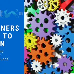 The Beginners Guide To Kaizen - Get started with this guide to Kaizen and its principles